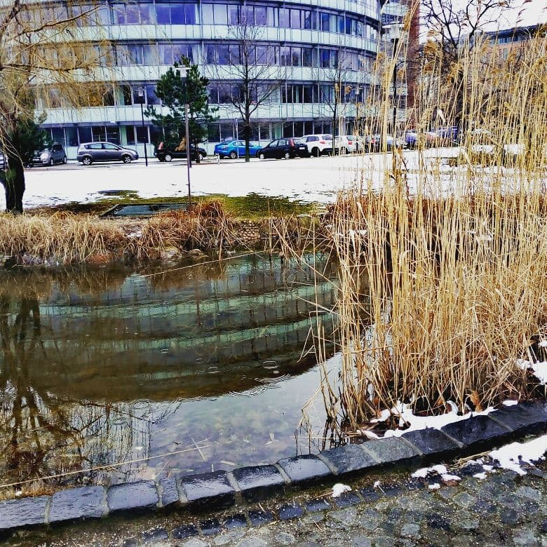 lake winter infopark